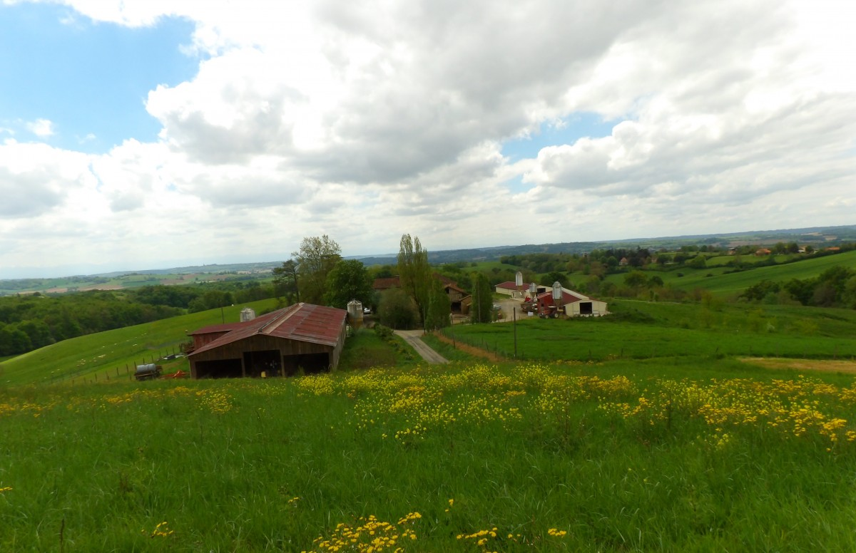 Domaine naturel 50 hectares abafim immobilier for Desherbant naturel grande surface