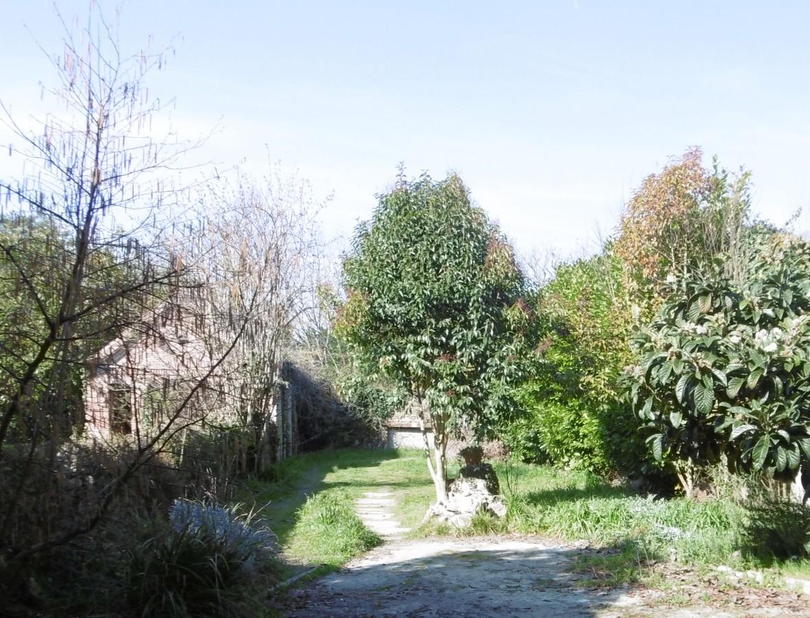 Maison atelier et jardin abafim immobilier for Jardin immobilier